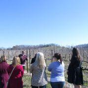 ladies wine tour 1