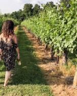 Raylen Vineyards